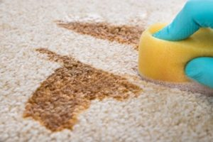 Stain Treatment Perth