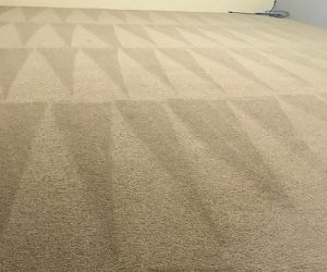 Carpet Cleaning Mindarie, Clarkson, Merriwa, Quinns Rocks and Butler