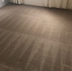 Carpet Cleaning Woodvale, Craigie, Hillarys and Sorrento